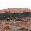 2013-05-26 07-47-45 Namibia - wschód słońca na pustyni zbudził też Lorettę.JPG
